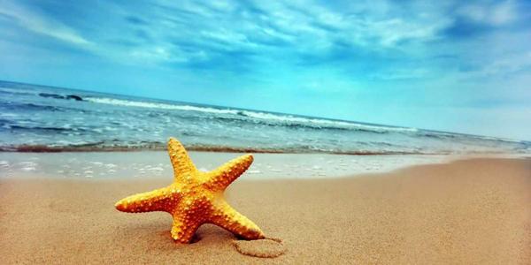 vacances-ete-teligo